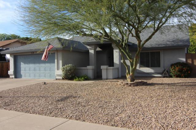 6334 W Campo Bello Drive, Glendale, AZ 85308 (MLS #5738803) :: Desert Home Premier