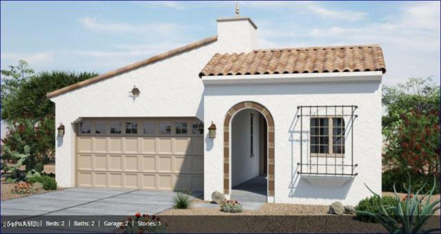 20704 W Meadowbrook Avenue, Buckeye, AZ 85396 (MLS #5738820) :: Desert Home Premier