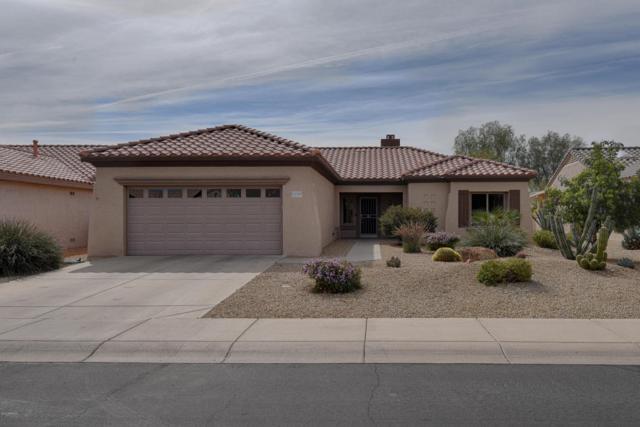 15335 W Echo Canyon Drive, Surprise, AZ 85374 (MLS #5738853) :: Desert Home Premier