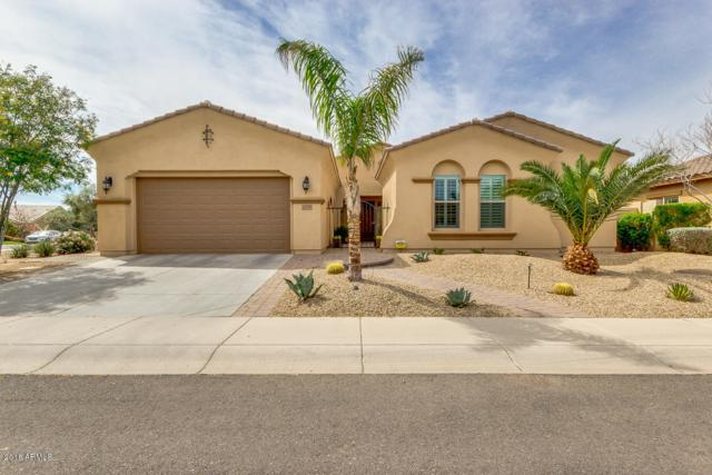 6720 S Lyon Drive, Gilbert, AZ 85298 (MLS #5738894) :: Team Wilson Real Estate