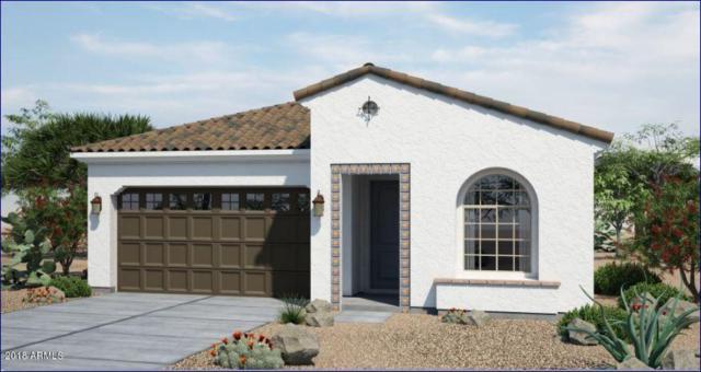 20745 W Hillcrest Boulevard, Buckeye, AZ 85396 (MLS #5738897) :: Desert Home Premier