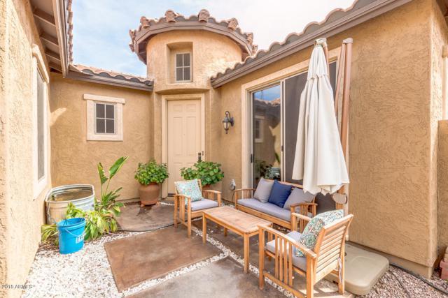 16987 W Hammond Street, Goodyear, AZ 85338 (MLS #5739103) :: Santizo Realty Group