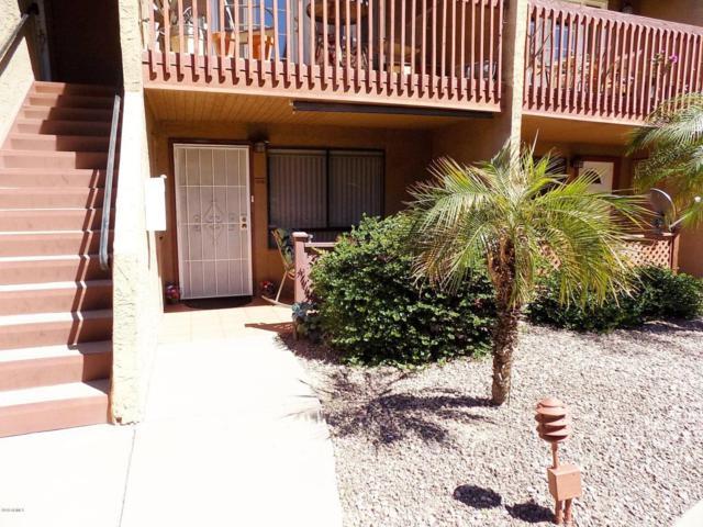 14203 N 19TH Avenue #1019, Phoenix, AZ 85023 (MLS #5739112) :: Brett Tanner Home Selling Team