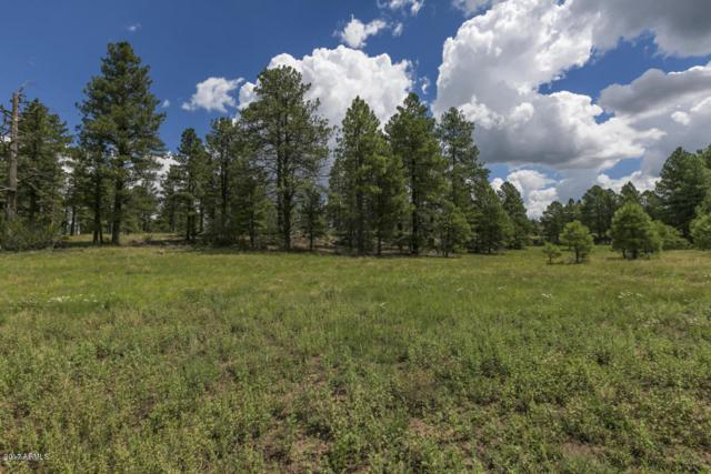 XXXX N Airport Road, Williams, AZ 86046 (MLS #5739205) :: The Wehner Group