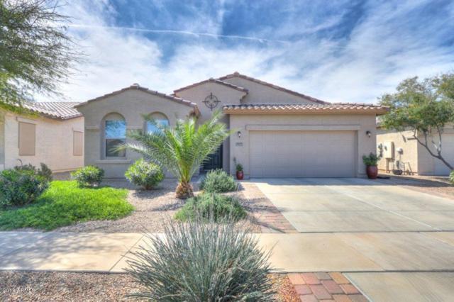 2645 E Santa Maria Drive, Casa Grande, AZ 85194 (MLS #5739221) :: Occasio Realty