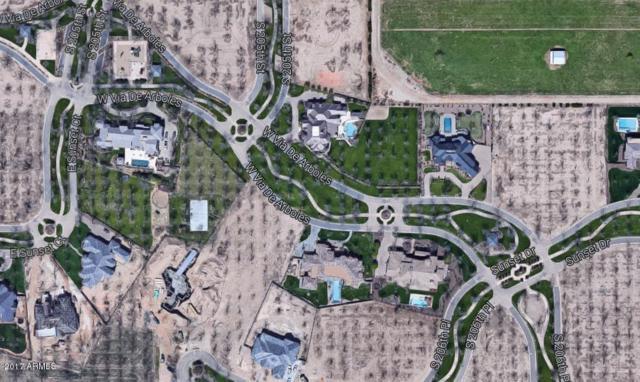 20549 E Via De Arboles Drive, Queen Creek, AZ 85142 (MLS #5739300) :: Brett Tanner Home Selling Team