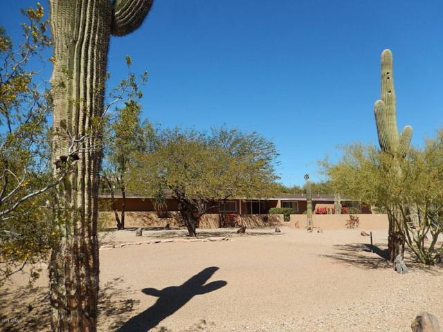 4002 E Mcdonald Drive, Paradise Valley, AZ 85253 (MLS #5739346) :: 10X Homes