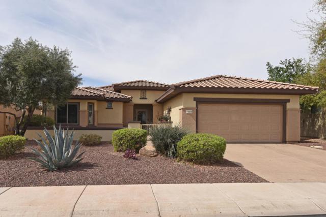 19560 N Canyon Whisper Drive, Surprise, AZ 85387 (MLS #5739355) :: Desert Home Premier