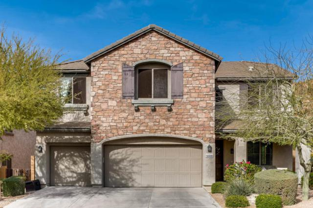 9008 W Red Fox Road, Peoria, AZ 85383 (MLS #5739416) :: Occasio Realty