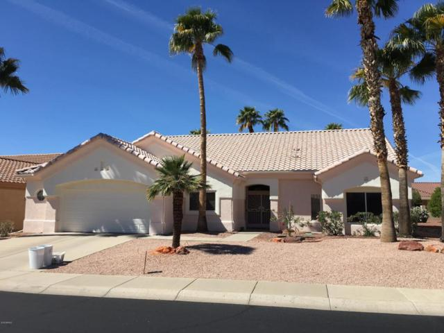 22604 N Dusty Trail Boulevard, Sun City West, AZ 85375 (MLS #5739479) :: Desert Home Premier