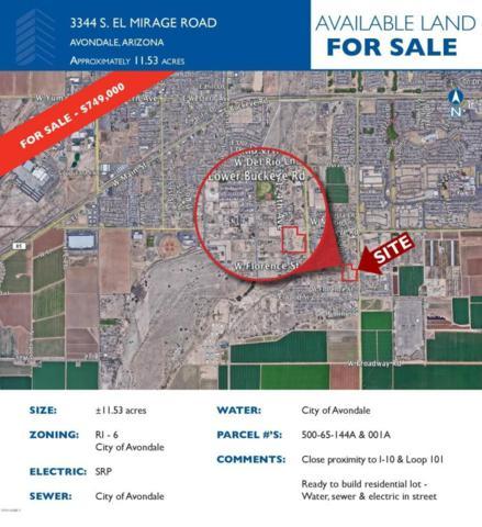 3344 S 123RD Avenue, Avondale, AZ 85323 (MLS #5739493) :: Brett Tanner Home Selling Team