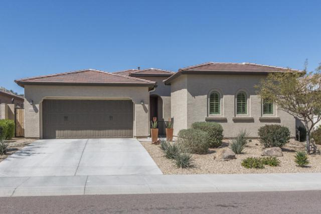14556 S 179TH Avenue, Goodyear, AZ 85338 (MLS #5739505) :: Brett Tanner Home Selling Team