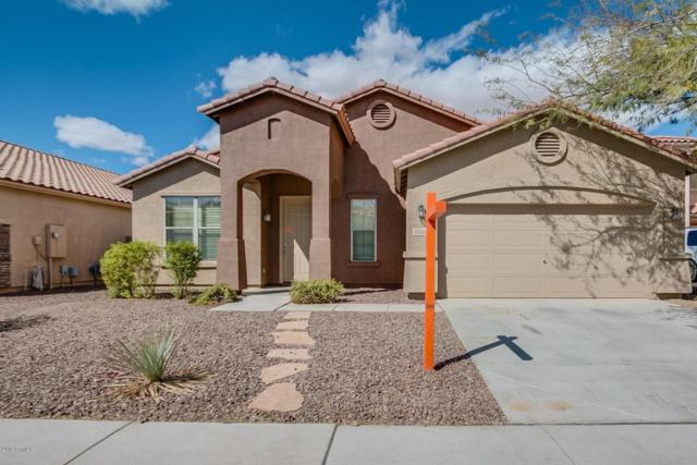 43344 W Wallner Drive, Maricopa, AZ 85138 (MLS #5739516) :: Occasio Realty