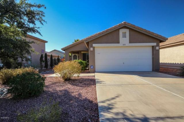 16579 W Tasha Drive, Surprise, AZ 85388 (MLS #5739556) :: The AZ Performance Realty Team
