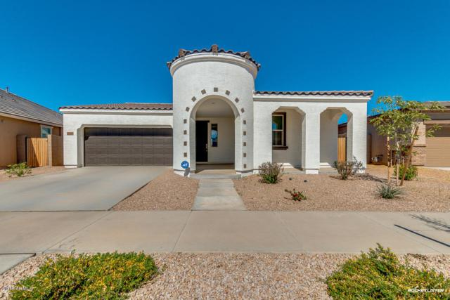 22606 E Via Del Oro, Queen Creek, AZ 85142 (MLS #5739567) :: Brett Tanner Home Selling Team