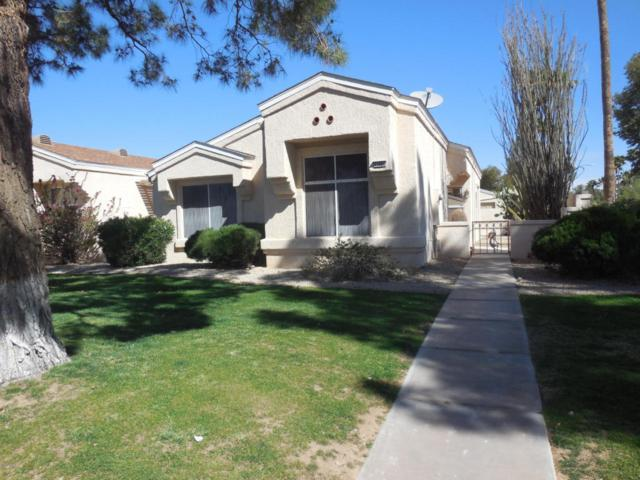 13650 W Aleppo Drive, Sun City West, AZ 85375 (MLS #5739601) :: Desert Home Premier