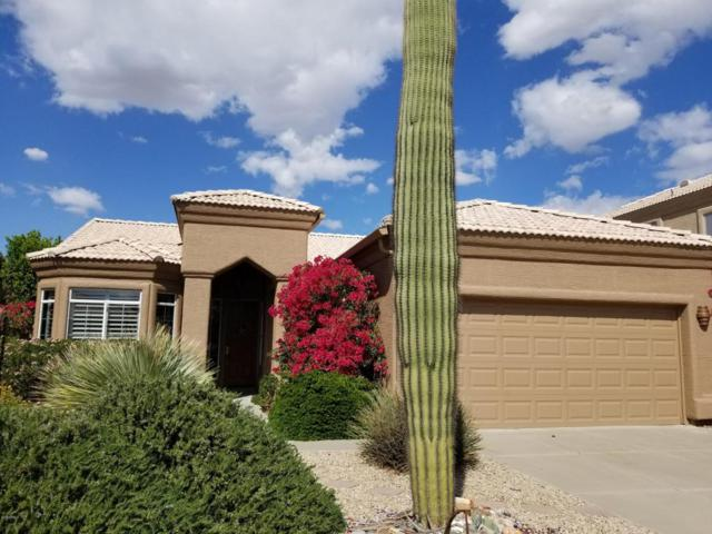 16108 E Glenview Drive, Fountain Hills, AZ 85268 (MLS #5739629) :: The AZ Performance Realty Team