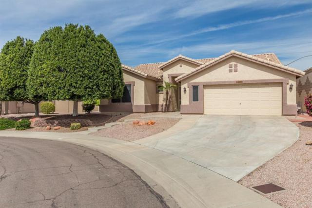 8302 W Escuda Drive, Peoria, AZ 85382 (MLS #5739633) :: The AZ Performance Realty Team