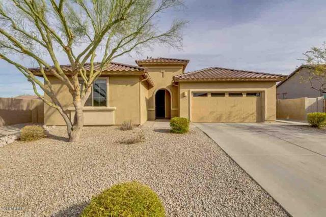 16364 W Buchanan Street, Goodyear, AZ 85338 (MLS #5739641) :: Brett Tanner Home Selling Team