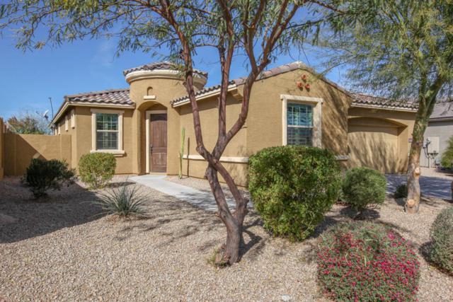 12834 S 184TH Avenue, Goodyear, AZ 85338 (MLS #5739657) :: Brett Tanner Home Selling Team