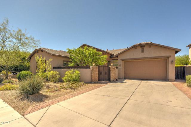 26788 N 90TH Drive, Peoria, AZ 85383 (MLS #5739659) :: Keller Williams Realty Phoenix