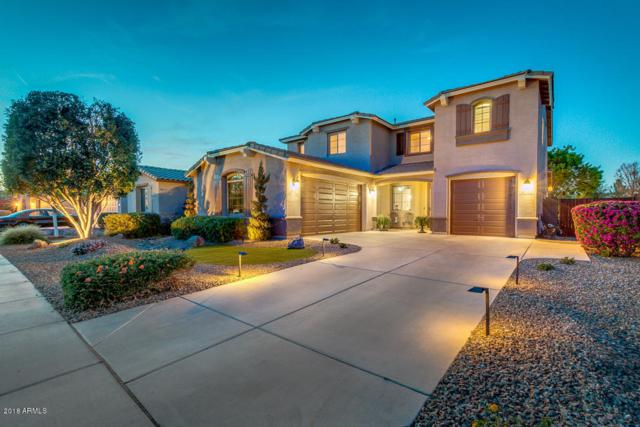 242 W Sweet Shrub Avenue, Queen Creek, AZ 85140 (MLS #5739680) :: Brett Tanner Home Selling Team