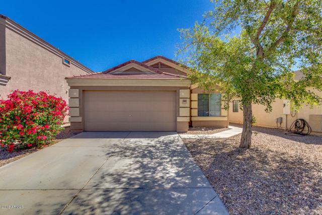 24061 W Twilight Trail, Buckeye, AZ 85326 (MLS #5739688) :: Desert Home Premier