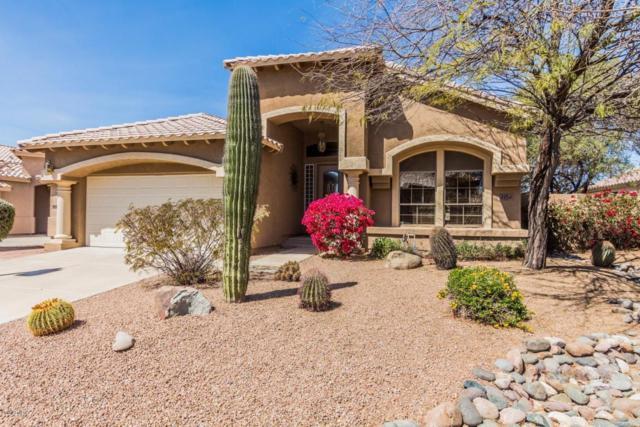 4864 E Barwick Drive, Cave Creek, AZ 85331 (MLS #5739719) :: RE/MAX Excalibur