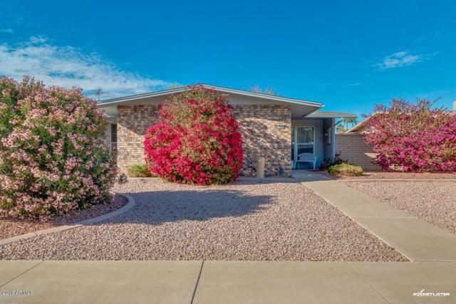 10546 W Granada Drive, Sun City, AZ 85373 (MLS #5739753) :: Brett Tanner Home Selling Team