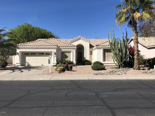 1830 W Goldfinch Way, Chandler, AZ 85286 (MLS #5739767) :: Brett Tanner Home Selling Team
