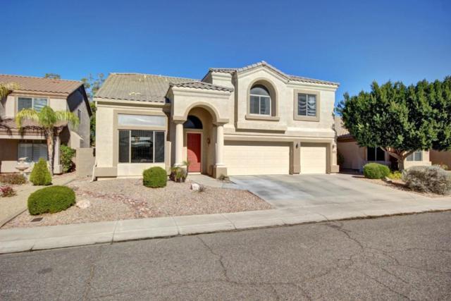 6418 W Hackamore Drive, Phoenix, AZ 85083 (MLS #5739821) :: Occasio Realty