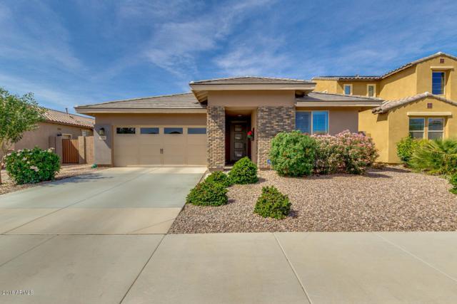 3386 E Plum Street, Gilbert, AZ 85298 (MLS #5739824) :: Brett Tanner Home Selling Team