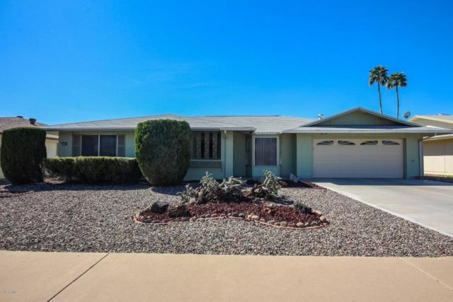 9719 W Edward Drive, Sun City, AZ 85351 (MLS #5739835) :: Desert Home Premier