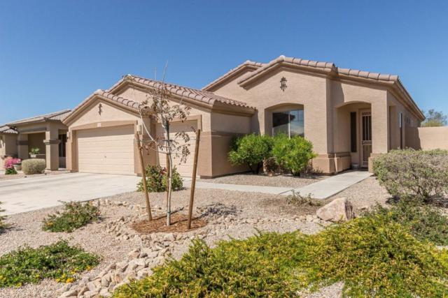 17818 W Buckhorn Drive, Goodyear, AZ 85338 (MLS #5739839) :: Brett Tanner Home Selling Team