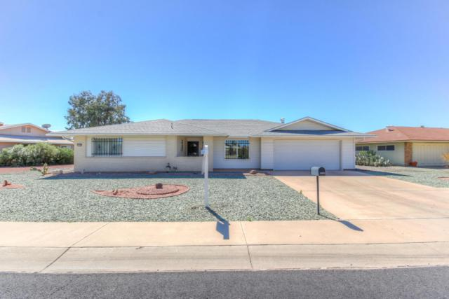 12422 N Vista Grande Court, Sun City, AZ 85351 (MLS #5739869) :: Desert Home Premier