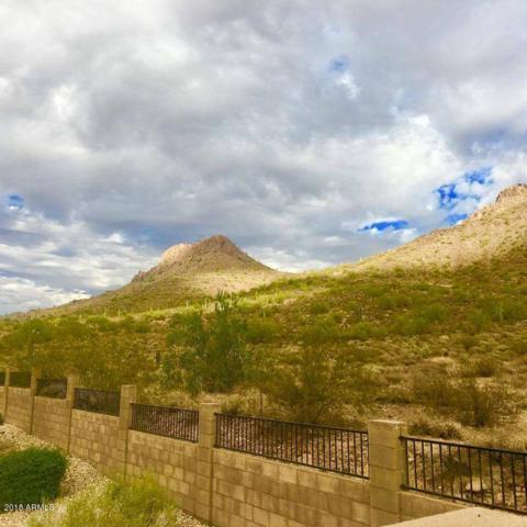 25241 N 63RD Drive, Phoenix, AZ 85083 (MLS #5739892) :: Occasio Realty