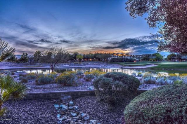 27906 N 124th Lane, Peoria, AZ 85383 (MLS #5739898) :: Brett Tanner Home Selling Team