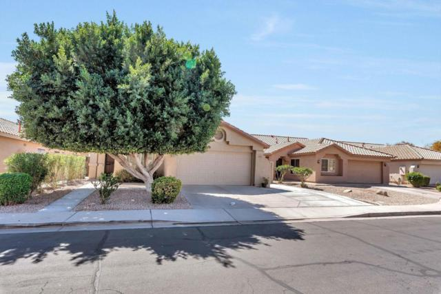 973 W Morelos Street, Chandler, AZ 85225 (MLS #5739902) :: Brett Tanner Home Selling Team