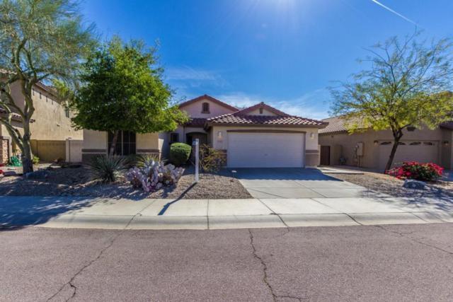 17465 W Desert Sage Drive, Goodyear, AZ 85338 (MLS #5739908) :: Brett Tanner Home Selling Team