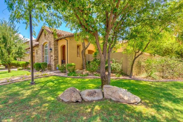 1153 W Kaibab Drive, Chandler, AZ 85248 (MLS #5739910) :: Brett Tanner Home Selling Team