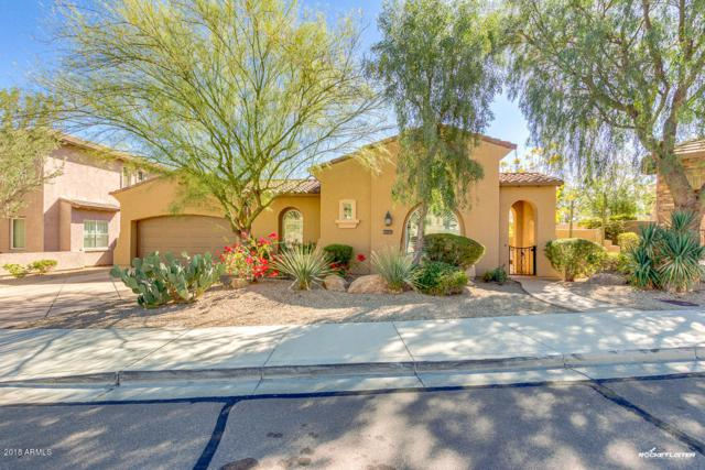 25919 N 84TH Drive, Peoria, AZ 85383 (MLS #5739912) :: Brett Tanner Home Selling Team