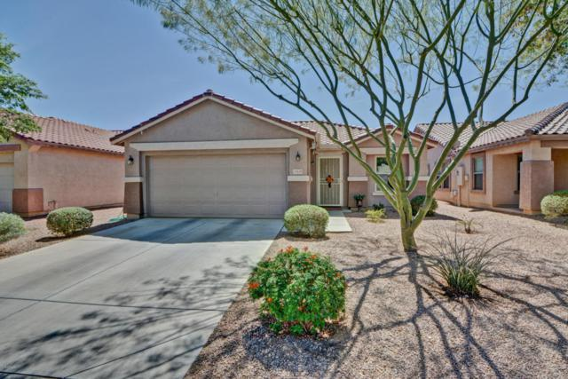 15439 W Cortez Street, Surprise, AZ 85379 (MLS #5739913) :: Brett Tanner Home Selling Team