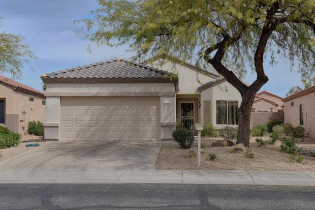 16374 W Crater Lane, Surprise, AZ 85374 (MLS #5739948) :: Brett Tanner Home Selling Team