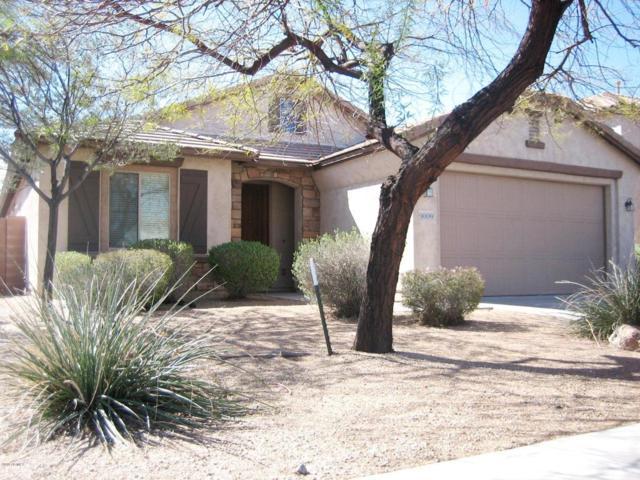 9009 W Pinnacle Vista Drive, Peoria, AZ 85383 (MLS #5739955) :: The Jesse Herfel Real Estate Group