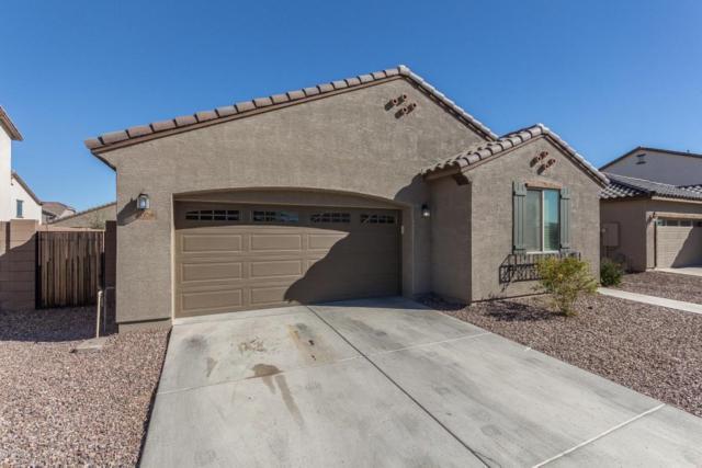 21258 E Pecan Lane, Queen Creek, AZ 85142 (MLS #5739963) :: Brett Tanner Home Selling Team