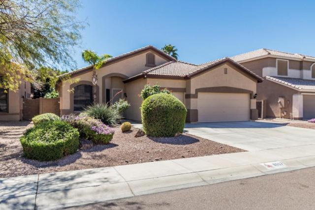 9007 W Quail Avenue, Peoria, AZ 85382 (MLS #5740039) :: Brett Tanner Home Selling Team