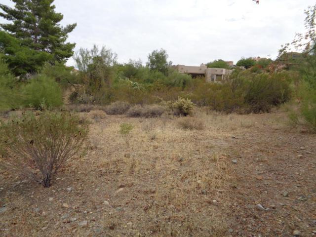 16816 N Paradox Drive, Fountain Hills, AZ 85268 (MLS #5740047) :: Yost Realty Group at RE/MAX Casa Grande