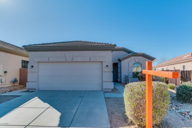 6549 W Andrea Drive, Phoenix, AZ 85083 (MLS #5740074) :: Brett Tanner Home Selling Team