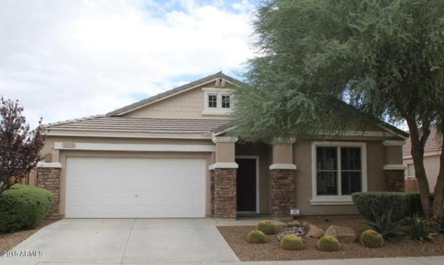 16329 N 171ST Lane, Surprise, AZ 85388 (MLS #5740109) :: Brett Tanner Home Selling Team