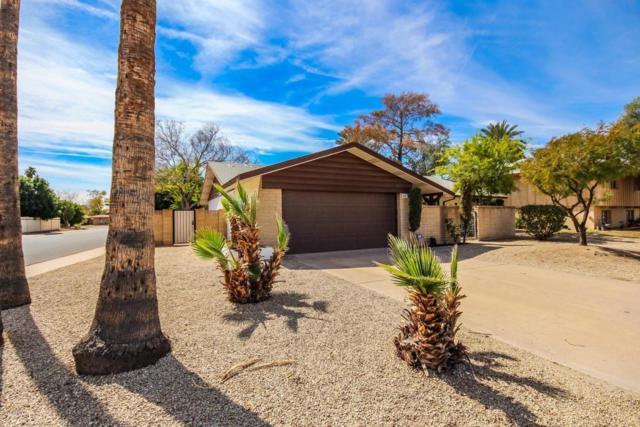 447 E Carson Drive, Tempe, AZ 85282 (MLS #5740114) :: Conway Real Estate